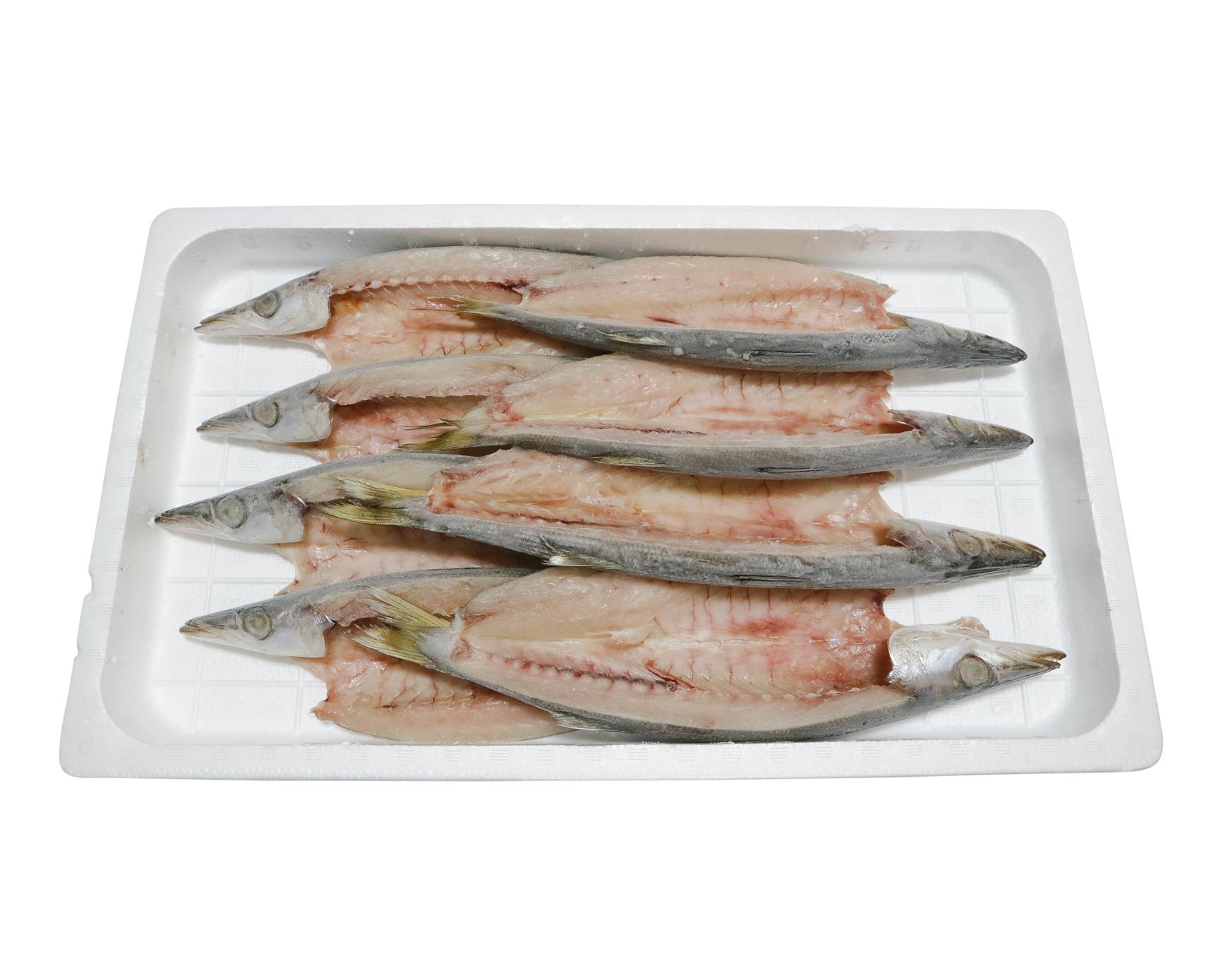 お皿からはみ出るでっかいカマス8枚【特売】