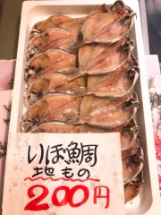 2019秋のいぼ鯛