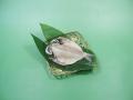 いぼ鯛 小