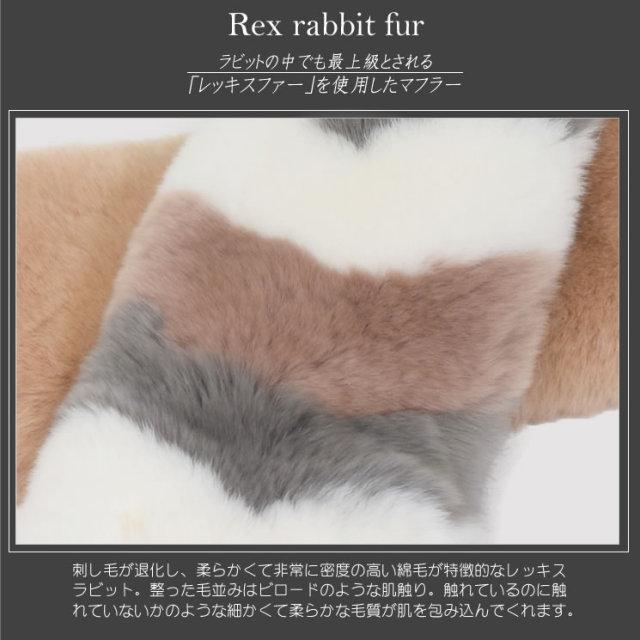 レッキス・ラビット マフラー・カラー