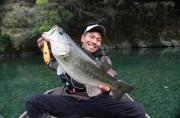 ALVAN DVD 『杉原康太郎 チェスト114 トップウォーターゲームin七色』