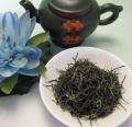【緑茶】信陽毛尖10g