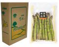 【露地栽培】美瑛産グリーンアスパラ 2Lサイズ 1kg 鮮度保持パッケージ ギフト箱仕様
