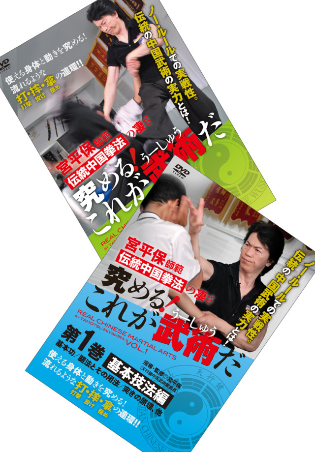 DVD2巻セット 『究める!これが武術だ』(通販限定)