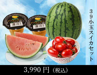 39セット(秋の味覚セット)