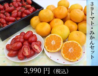 39セット(秋の梨・柿セット)