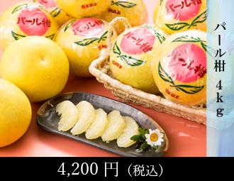 梨 2玉・柿 2玉・みかん 1kg・さつまいも 1kg(ろ)