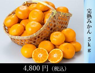 新高梨 5kg(5-6玉)