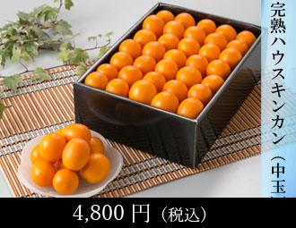 小玉スイカ 1玉・柑橘100%ジュース 5本
