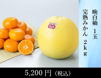 太秋柿 3kg(6-9玉)