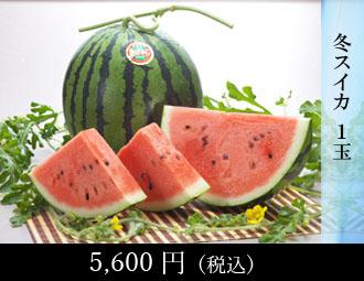 フルーツトマト 1.3kg・デコポン 4-5個