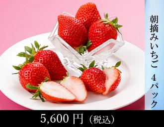マスクメロン 1玉・梨 2玉・柿 2玉・みかん 1kg・さつまいも 1kg(ほ)