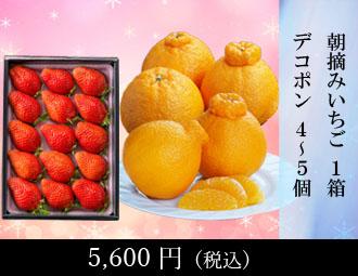 晩白柚 1玉・デコポン 3-4個