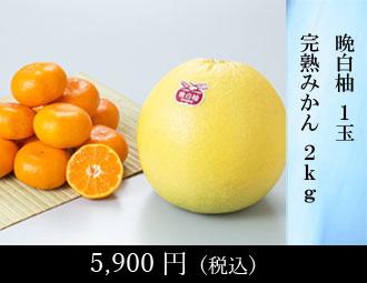 熊本柑橘堪能セット(は)
