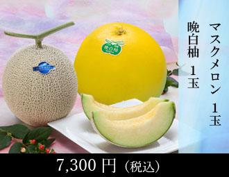 熊本柑橘堪能セット(ほ)