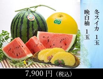 熊本柑橘堪能セット(へ)