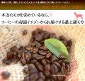 イエメン モカ クラシック・マタリコーヒー