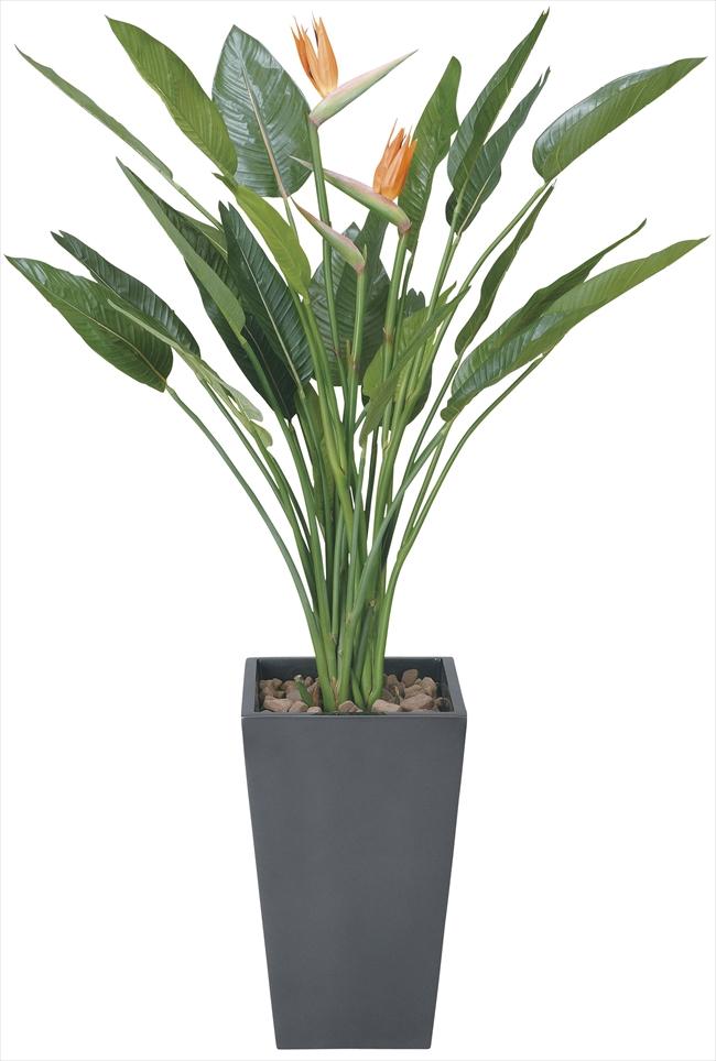 光触媒 光の楽園アートストレチア花付 高さ 1.6m【インテリアグリーン 大型 人工観葉植物】(115e900)