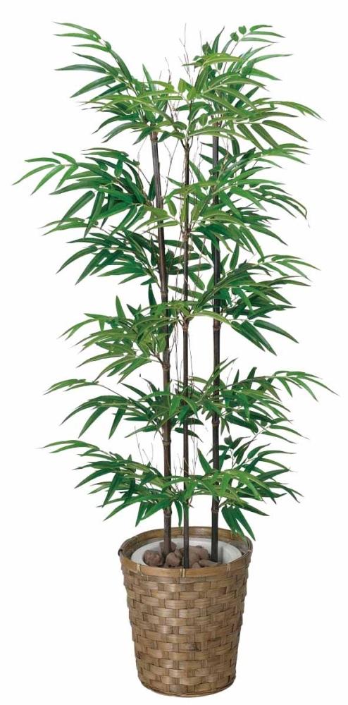 光触媒 光の楽園黒竹 1.2m【インテリアグリーン 人工観葉植物】(177a170)