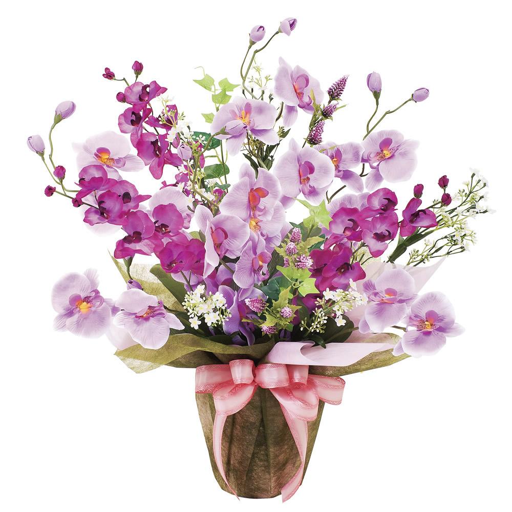 光触媒 光の楽園ツインコチョウラン【アートフラワー 造花 】(319a70)