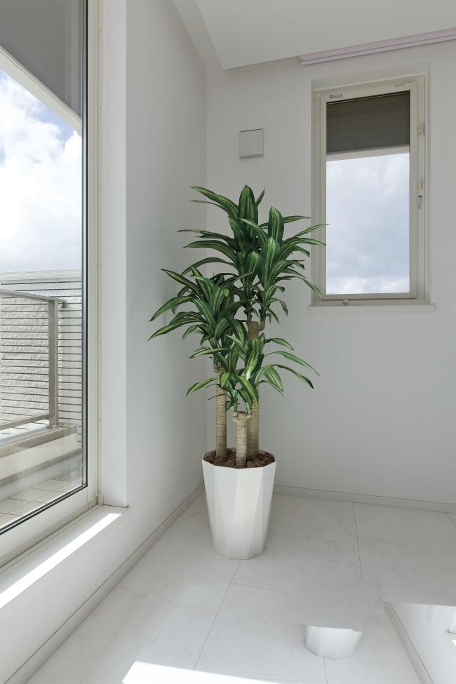 光触媒 光の楽園幸福の木 1.6m【インテリアグリーン 人工観葉植物】(400a300)