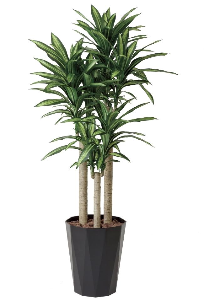 光触媒 光の楽園幸福の木 高さ 1.8m【インテリアグリーン 大型 人工観葉植物】(401e400)