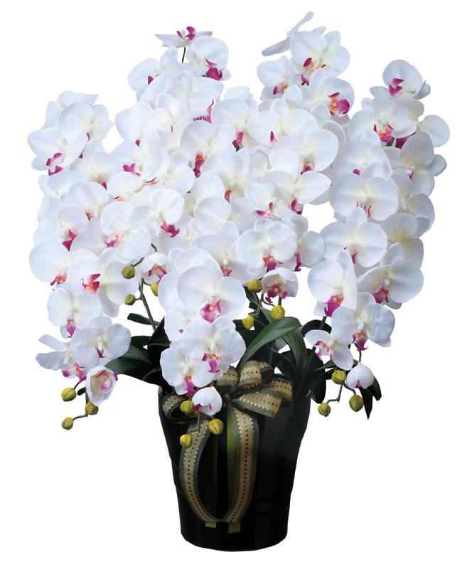 光触媒 光の楽園ロイヤル胡蝶蘭5本立W/AB【アートフラワー 造花 】(※ラッピング不可)(447a300)