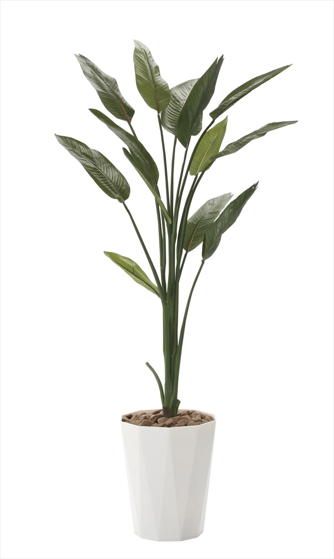 <2017新作>光触媒 光の楽園ストレチア1.6m【インテリアグリーン 人工観葉植物】(729a250)