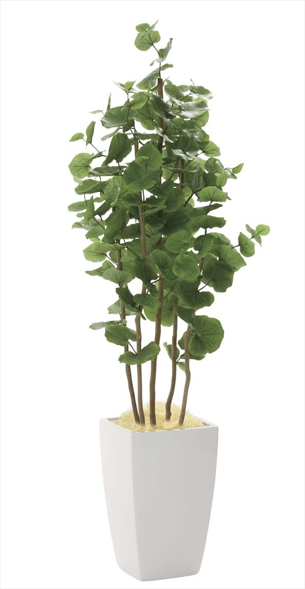 光触媒 光の楽園アーバンシーグレープ 高さ 1.8m【インテリアグリーン 大型 人工観葉植物】(942a600)