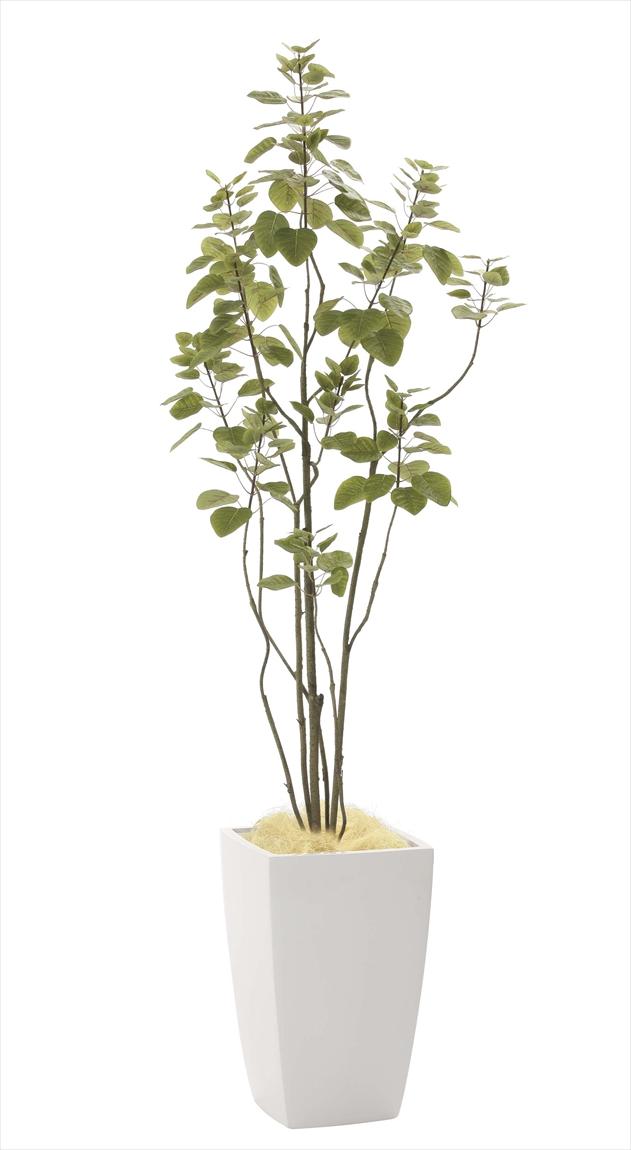 光触媒 光の楽園アーバンブランチツリー1.8m【インテリアグリーン 人工観葉植物】(944a450)