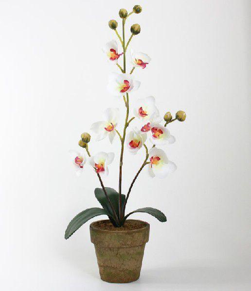 光触媒 光の楽園胡蝶蘭ポット L ホワイト【アートフラワー 造花 】(acn031)