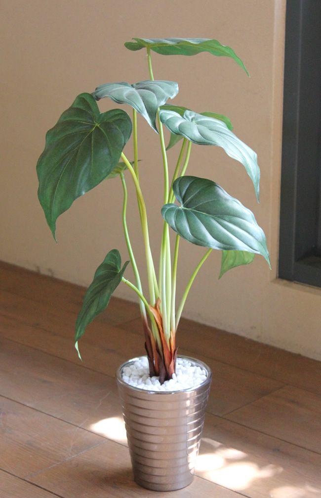 光触媒 光の楽園アロカシア【インテリアグリーン 人工観葉植物】(acn050)