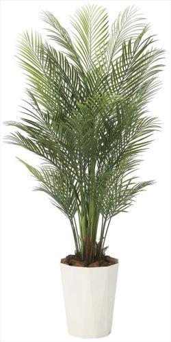 光触媒 光の楽園 アレカパーム 高さ 1.7m 【インテリアグリーン 人工観葉植物】 (2006a400)