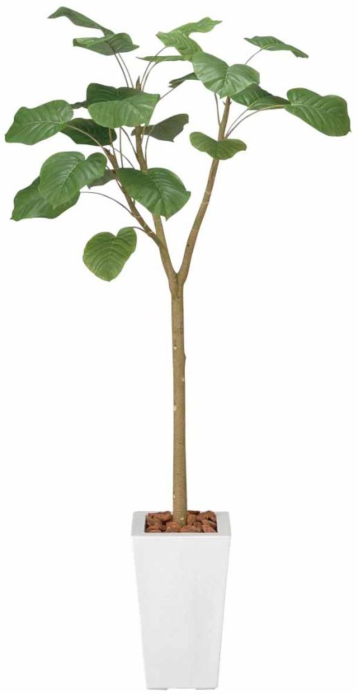 光触媒 光の楽園ウンベラータ 高さ 1.7m【インテリアグリーン 大型 人工観葉植物】(128a400)