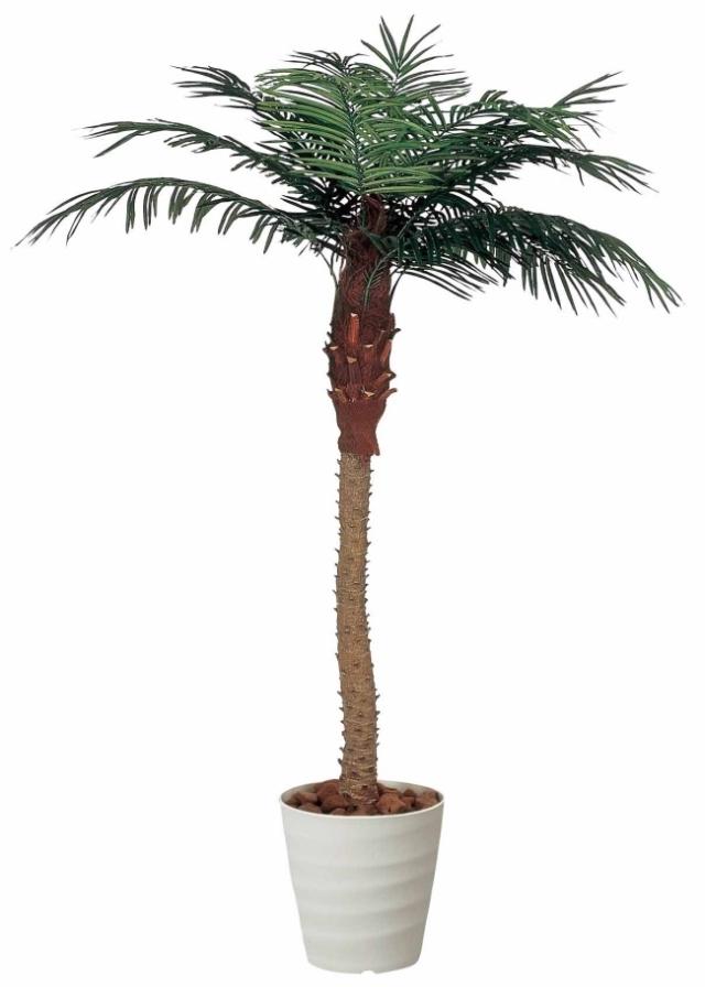光触媒 光の楽園フェニックス 高さ 2.1m【インテリアグリーン 大型 人工観葉植物】(138a500)