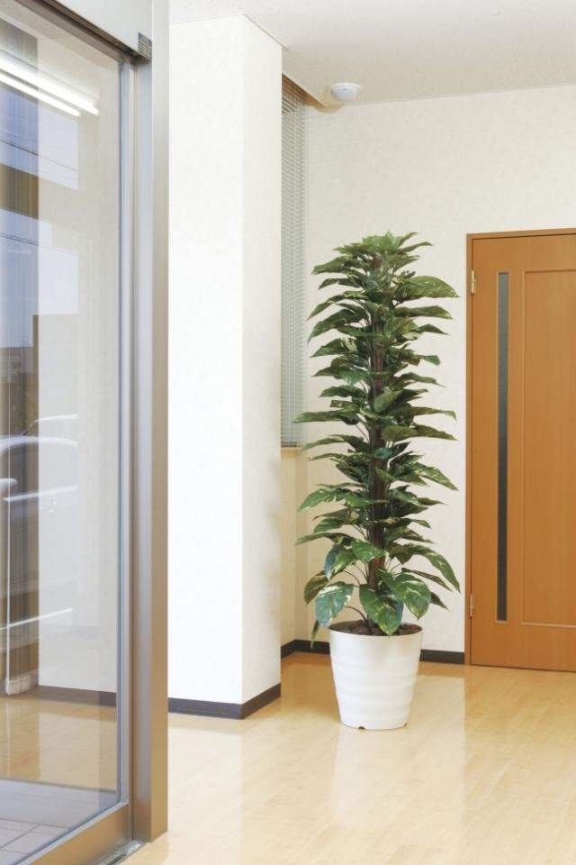 光触媒 光の楽園ジャイアントポトス 高さ 1.8m【インテリアグリーン 大型 人工観葉植物】(145a350)