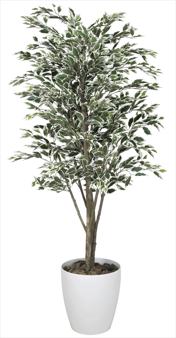 光触媒 光の楽園ベンジャミンツリー斑入り 高さ 1.6m【インテリアグリーン 大型 人工観葉植物】(153c380)