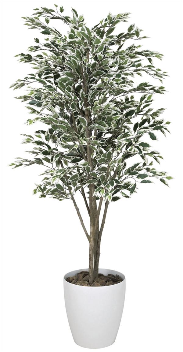 光触媒 光の楽園ベンジャミンツリー斑入り 高さ 1.8m【インテリアグリーン 大型 人工観葉植物】(154c480)