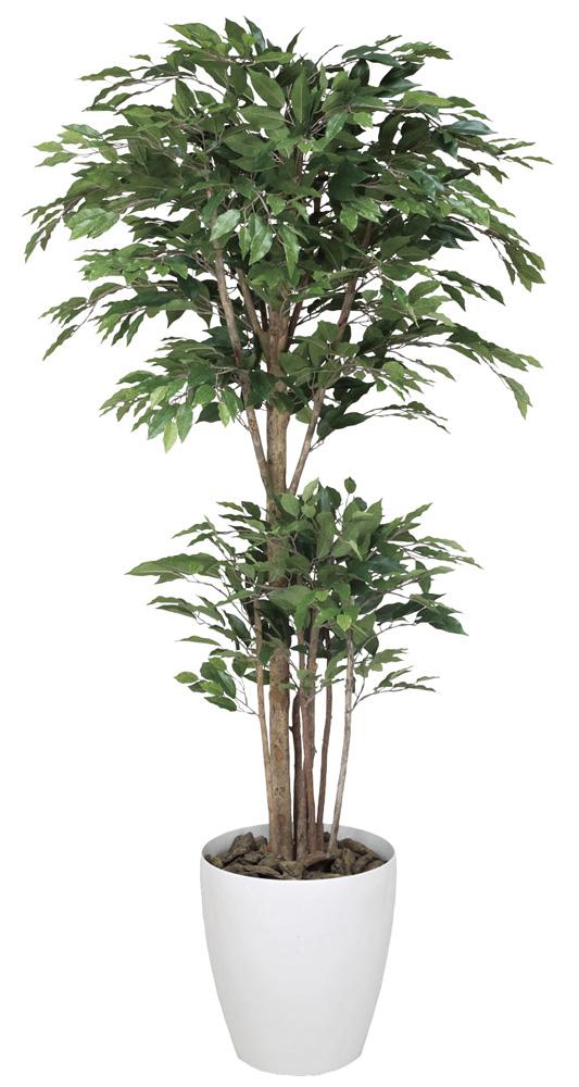 光触媒 光の楽園 トロピカルベンジャミン 高さ 1.6m 【インテリアグリーン 大型 人工観葉植物】 (161g450)