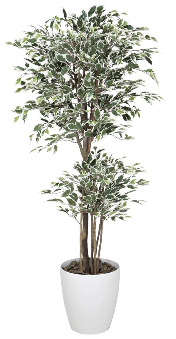 光触媒 光の楽園トロピカルベンジャミン斑入り 高さ 1.8m【インテリアグリーン 大型 人工観葉植物】(167f570)