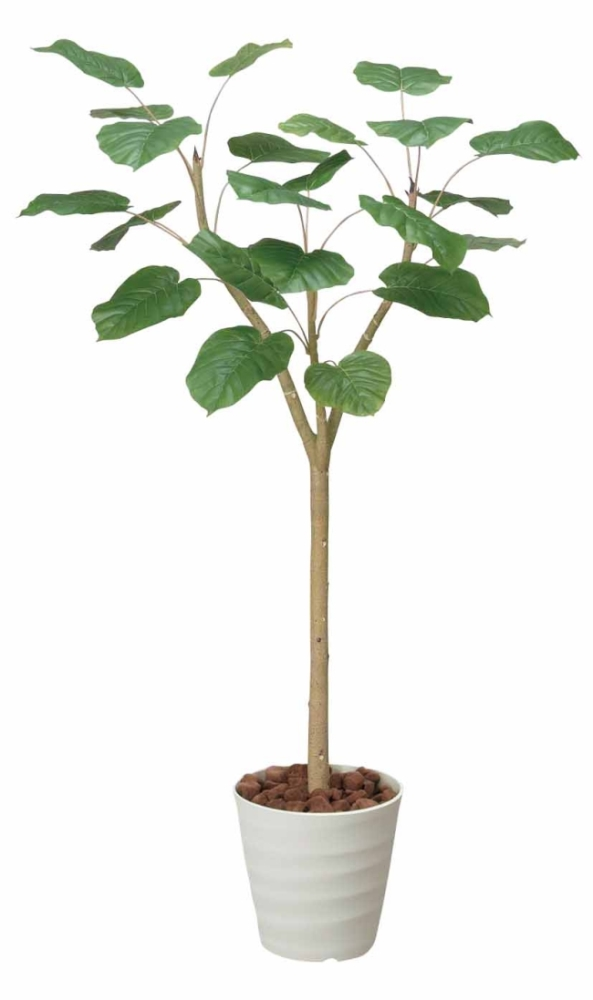 光触媒 光の楽園ウンベラータ 高さ 1.55m【インテリアグリーン 大型 人工観葉植物】(171e280)