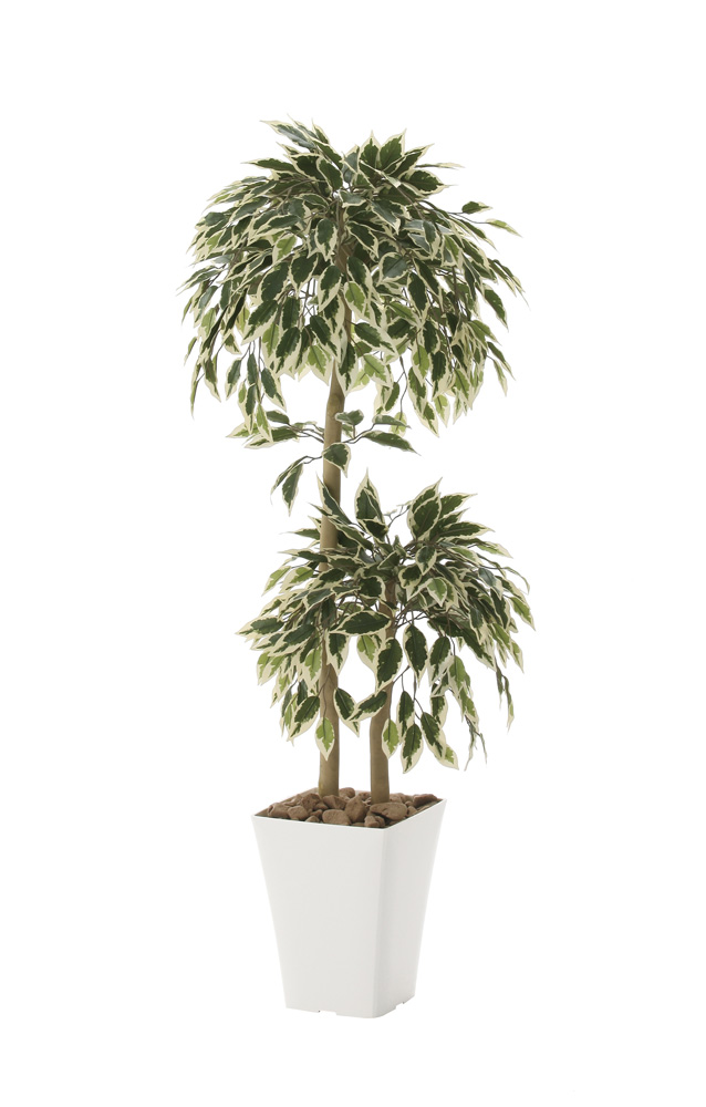 光触媒 光の楽園 斑入りベンジャミンダブル 高さ 1.2m 【インテリアグリーン 人工観葉植物】 (192g200)
