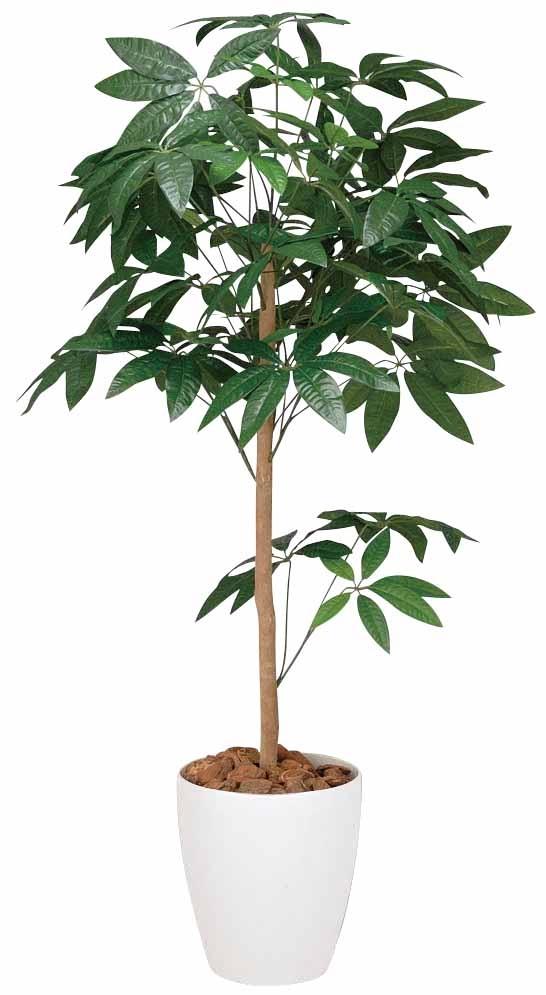 光触媒 光の楽園パキラトピアリー 高さ 1.5m【インテリアグリーン 大型 人工観葉植物】(194b250/194a230)