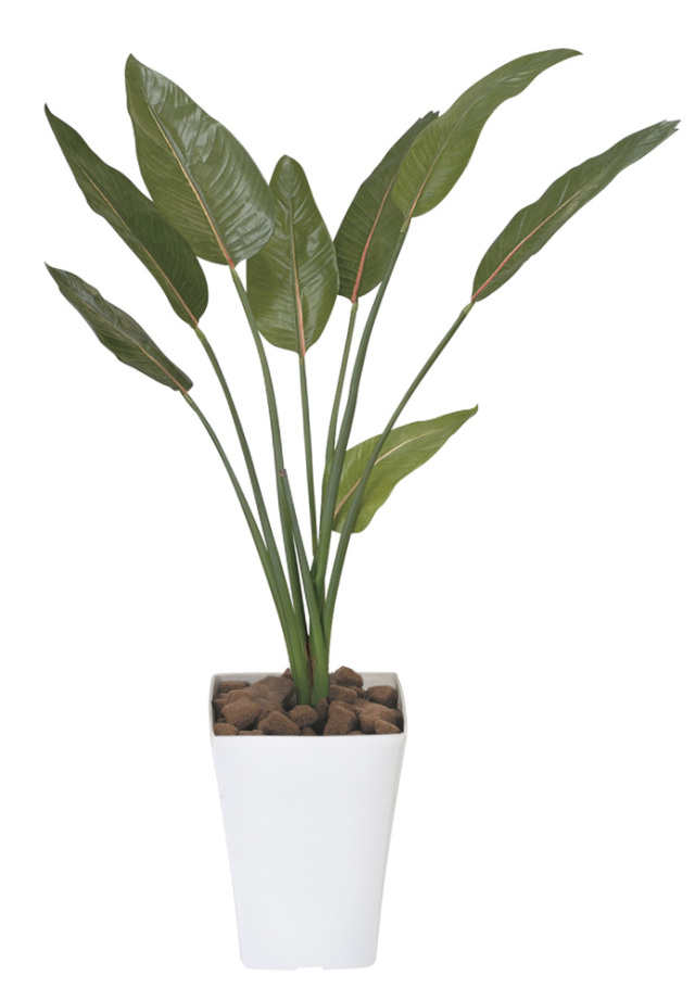 光触媒 光の楽園 ストレチア 高さ 1.1m 【インテリアグリーン 人工観葉植物】 (196g200)