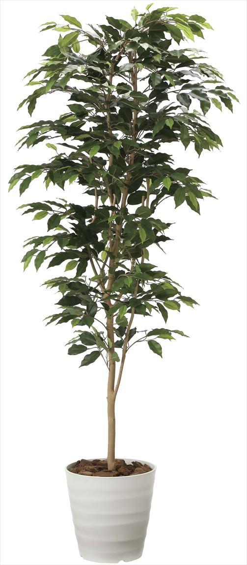光触媒 光の楽園 ベンジャミン 高さ 1.8m 【インテリアグリーン 大型 人工観葉植物】 (2014a300)