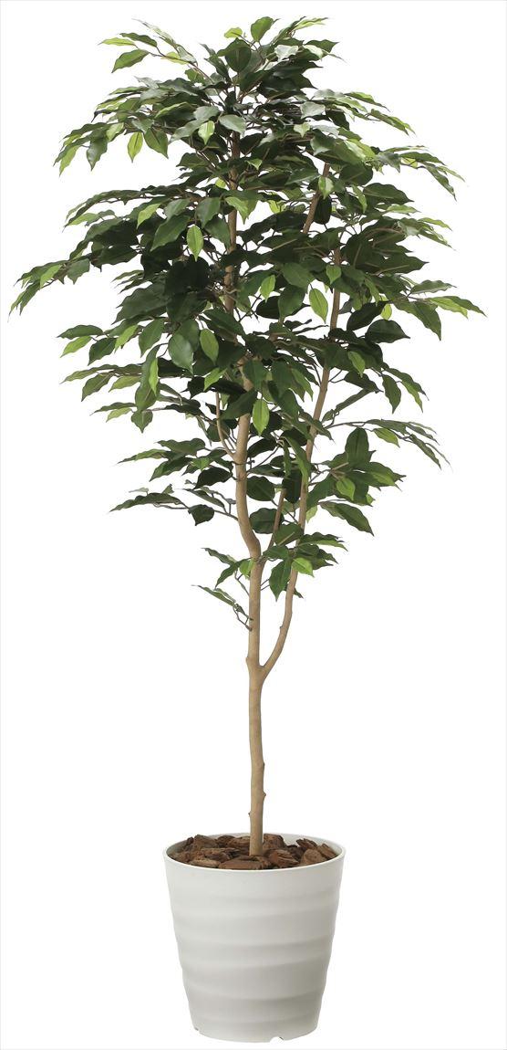光触媒 光の楽園 ベンジャミン 高さ 1.6m 【インテリアグリーン 大型 人工観葉植物】 (2015a250)