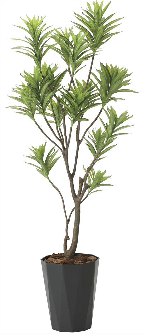 光触媒 光の楽園 フレッシュドラセナ 高さ 1.8m 【インテリアグリーン 大型 人工観葉植物】 (2016a380)