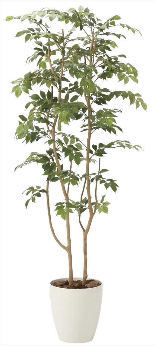 光触媒 光の楽園 マウンテンアッシュ 高さ 1.6m 【インテリアグリーン 大型 人工観葉植物】 (2021a300)