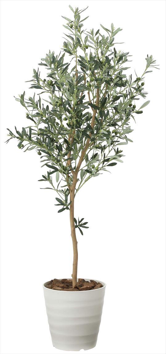 光触媒 光の楽園 オリーブツリー 高さ 1.6m 【インテリアグリーン 大型 人工観葉植物】 (2022a300)