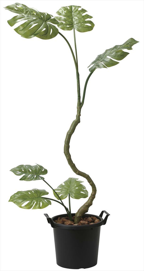 光触媒 光の楽園 インテリアモンステラ 高さ 1.7m 【インテリアグリーン 大型 人工観葉植物】 (2025a250)